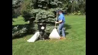 Electric Wood Chipper Leaf Shredder Shredding Leaves