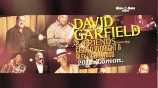 DAVID GARFIELD & FRIENDS featuring GERALD ALBRIGHT & ALEX LIGERTWOOD :BNT2012 trailer