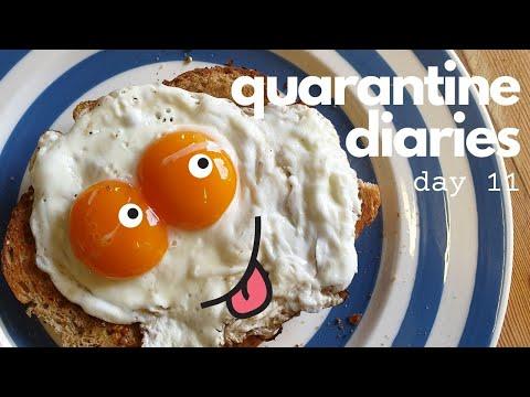 quarantine-diaries-vlog-day-11:-chickens-|-coronation-egg-recipe-|-clearing-allotment-|-farm-life-🌞