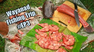 കേരളത്തിൽ നിരോധിച്ച മീൻ നമുക്ക് കിട്ടിയാൽ മീൻ ഫ്രൈ? Africa Catfish Catch And Cooking | Omkv fishing