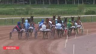 Vidéo de la course PMU PRIX DE FERMANVILLE