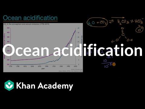 Ocean acidification  Global Change  AP Environmental science  Khan Academy