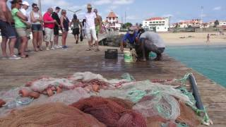 Sal Kaapverdië - Cabo Verde - Cape Verde 2016 (Paradise Island)