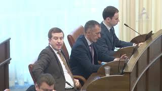 Выступление Татьяны Давыденко на сессии Законодательного собрания