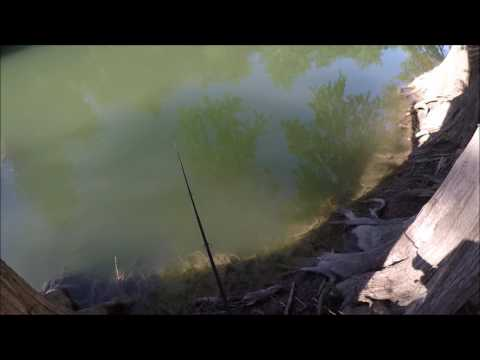 Bank Fishing Catfish On A Texas River