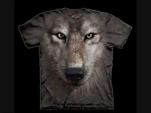 amazing-mountain-t-shirts