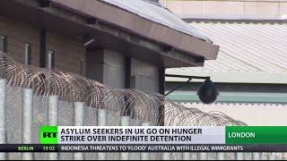 Massive hunger strike in UK immigration detention center, inmates live-tweet