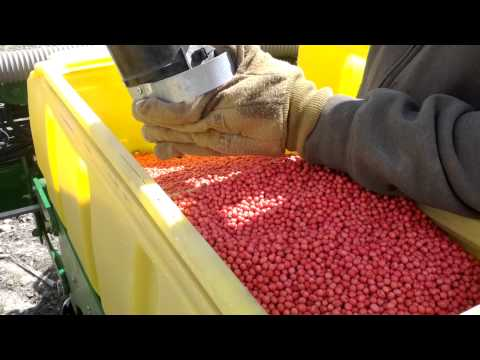 Filling Planter with Bulk Soybeans from Seed Tender