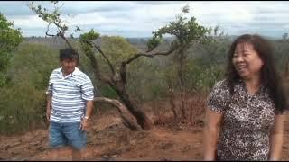CAMBODIA 2011 DISK 22