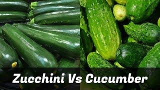 Zucchini Vs Cucumber - Get The Facts!