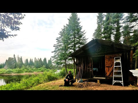 RESTORING AN OLD LOG CABIN IN THE MAINE WOODS (with a dog)