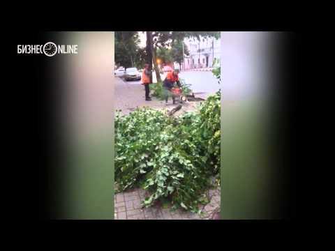 Рабочие распиливают поваленные ураганом деревья в Ленинском садике в Казани