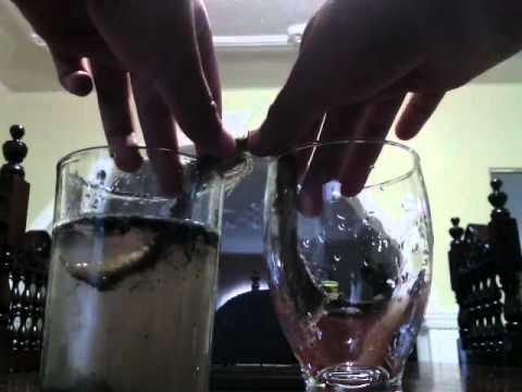 De agua sucia a limpia youtube - Como limpiar alfombras muy sucias ...