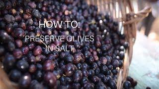 How To: Preserve Olives in Salt