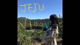 [Vlog]제주도 여행 브이로그/아부오름/카페브리프/협…