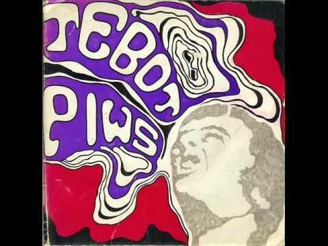 Y tebot piws - Mae rhywyn wedi dwyn fy nhrwyn