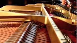 Los Angeles Piano Tuner (424) 249-9885, Los Angeles Piano Tuning, LA Piano Tuners