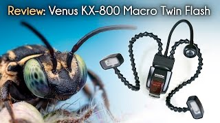 Lighting for Macro Photography and Review of the Venus KX-800 Twin Flash
