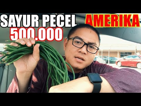 Belanja Sayur di AMERIKA, Bayar Berapa?