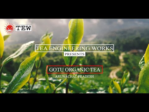 TEW II GOTU ORGANIC TEA PROCESSING UNIT II +919954121648