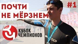 Кубок Чемпионов плавание