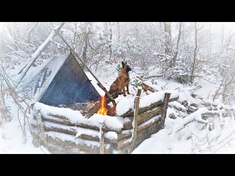 Caught in a Storm - Winter Camping in a Snowstorm with My Dog - Bushcraft Trip - Survival
