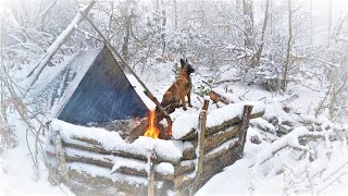 Caught in a St๐rm - Winter Camping in a Snowstorm with My Dog - Bushcraft Trip - Survival