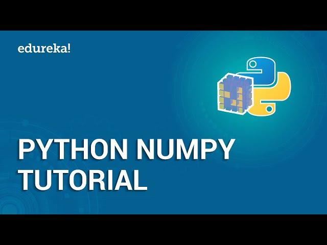 Python Numpy Tutorial - Arrays In Python