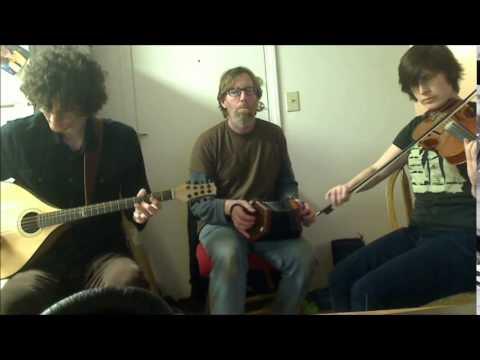 Ormond Sound/Connaught Heifers