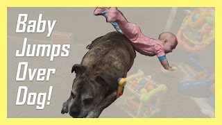 Baby Jumping Over Dog & More ENT Testing! DITL | Allison's Journey