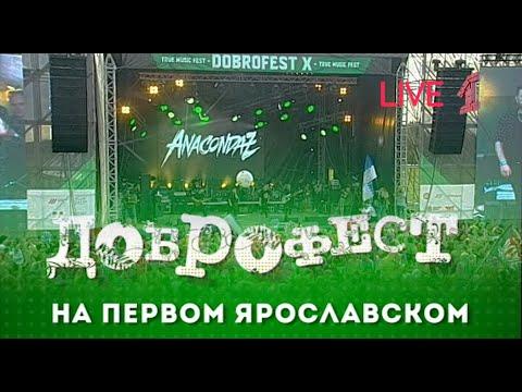 """Anacondaz - Live Доброфест - 2019 (""""Первый Ярославский"""")"""