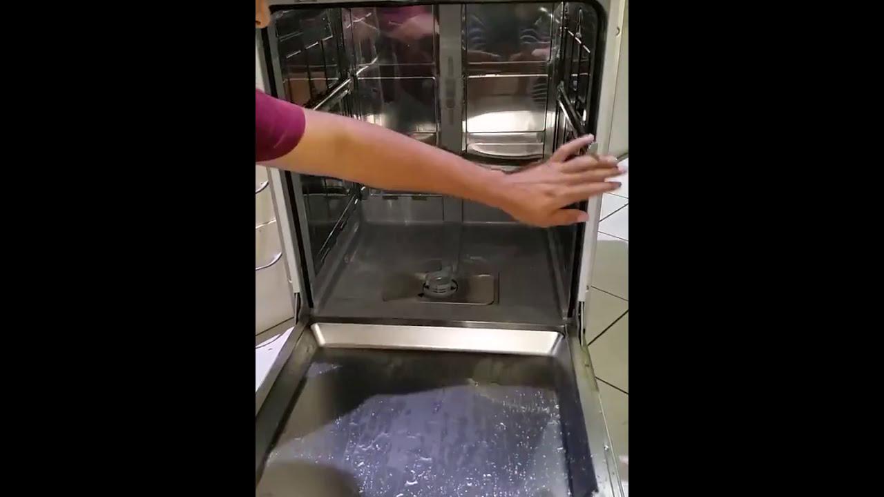 Thermador Bosch Dishwasher E24 Fix - FROZEN PUMP! by Matthew