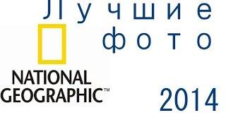 Лучшие фотографии National Geographic 2014 года. Красивые фото под музыку