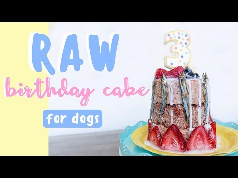 Raw Birthday Cake For Dogs   HEALTHY