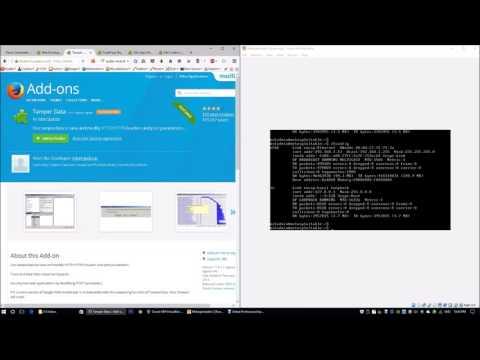 Firefox Hacking Addons (Cybersecurity)
