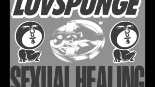 LUVSPUNGE - SEXUAL HEALING (ORIGINAL MIX) [HQ] (3/3)