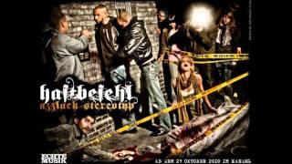 SIDO feat HAFTBEFEHL 2010