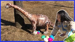 공룡알을 집에 가지고 와서 부화시켜봤어요. 공룡알 키우기 장난감 Toy