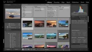 Lightroom Logistics: Part 3 - How To Search All Your Photos For Specific Data in Lightroom