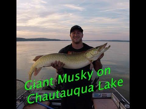 Chasing Giant Musky on Chautauqua Lake