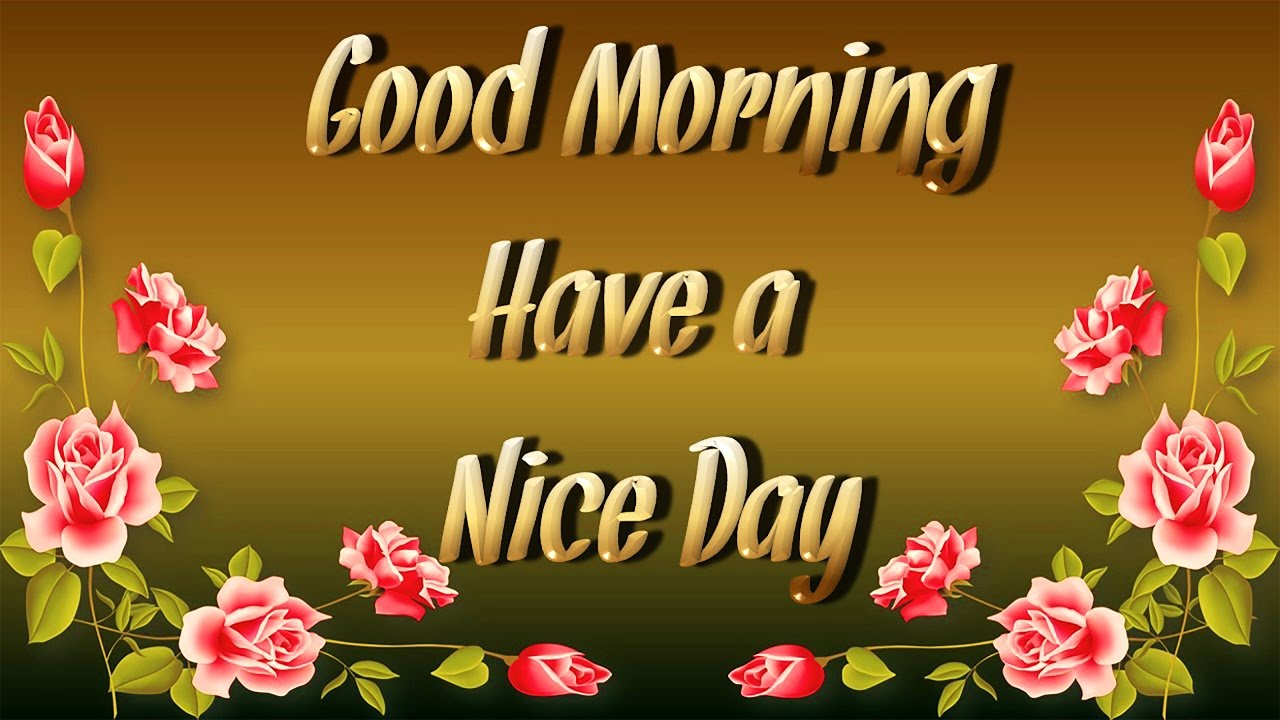 30 Beautiful Good Morning Quotes For Him: Animated Good Morning Quotes Whatsapp Greetings Video