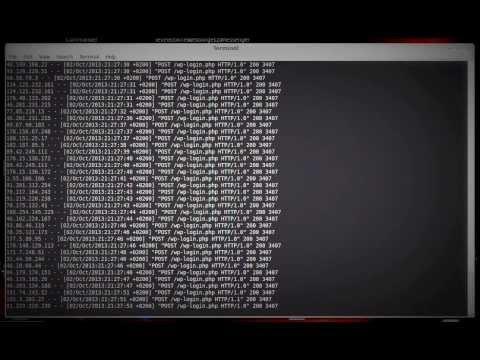 WordPress brute-force támadás: wp-login.php
