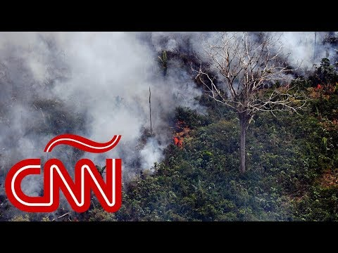 Brasil, Bolivia y Paraguay luchan contra el fuego en Amazonas, ¿quién causó esta tragedia ecológica?