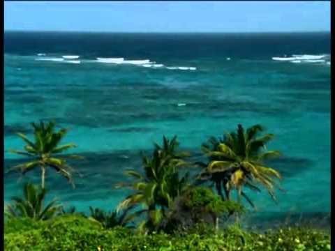 St. Vincent & The Grenadines Promo Tourism Video