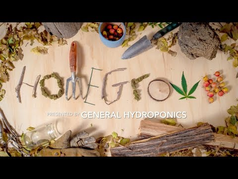 Homegrown Episode 1 - How to Start a Home Grow