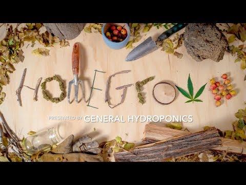 Homegrown Episode 1 - How to Start a Home Grow