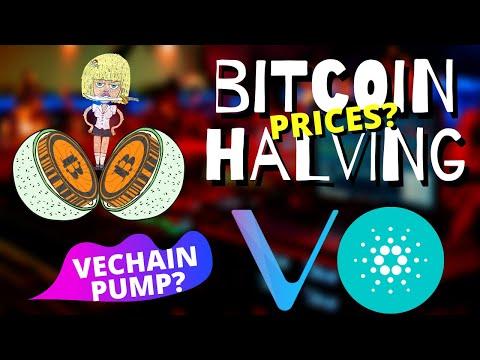 🎬 Altcoin Buzz: Bitcoin and Crypto Everywhere | BTC Halving Price | Vechain Microsoft? Cardano ADA