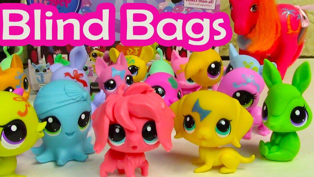 Dog House Blind Bag