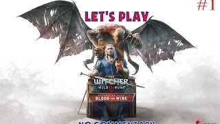 The Witcher 3: Blood and Wine - Gameplay 2k 60fps - No Commentary - Part 1