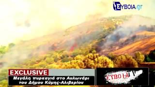 Πυρκαγιά στο Αυλωνάρι - Μαντράκι - Οκτωνιά Ευβοίας 2012